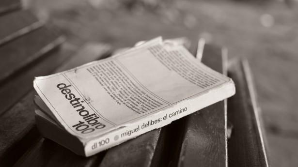 Lectura inspiradora. El camino de Miguel Delibes